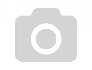 Защита голень-стопа IMMAF синяя Green Hill